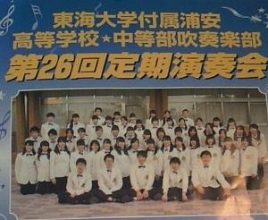 NEC_0001 (300x246).jpg